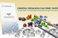 Ngọc học và giám định vàng bạc đá quý cho người mới bắt đầu