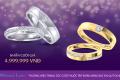 Tuần lễ Trang sức DOJI 2019: Đừng bỏ lỡ 100 cặp nhẫn cưới giá 4.999.999 đồng